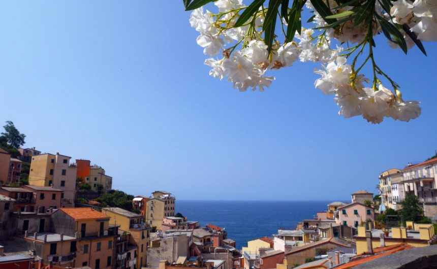 The steep landscape allows for a good view of Riomaggiore from a high vantage point | Laugh Travel Eat