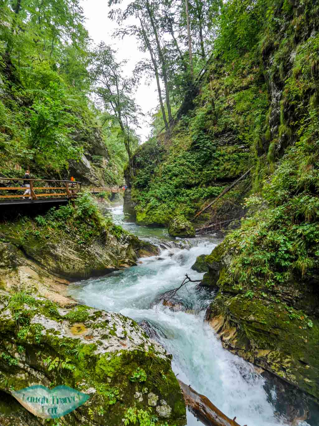 Vintgar-gorge-river-with-the-winding-hiking-trail-by-one-of-its-bank-Vintgar-Gorge-Slovenia-laugh-travel-eat