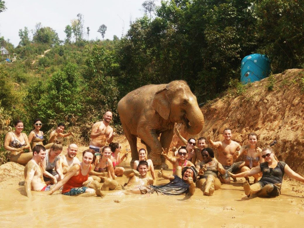 Mud bath with the elephants at Elephant Jungle Santuary | Laugh Travel Eat