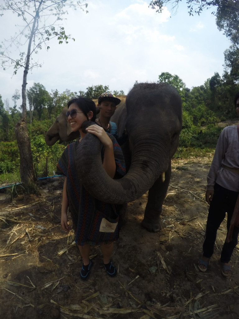 Elephant kiss at Elephant Jungle Santuary | Laugh Travel Eat
