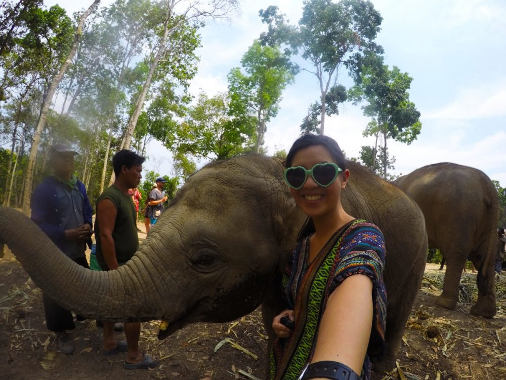 Selfie with baby elephant at Elephant Jungle Sanctuary | Laugh Travel Eat
