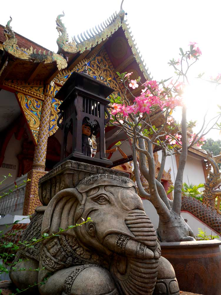 Wat Lam Chang, Chiang Mai, Thailand | Laugh Travel Eat
