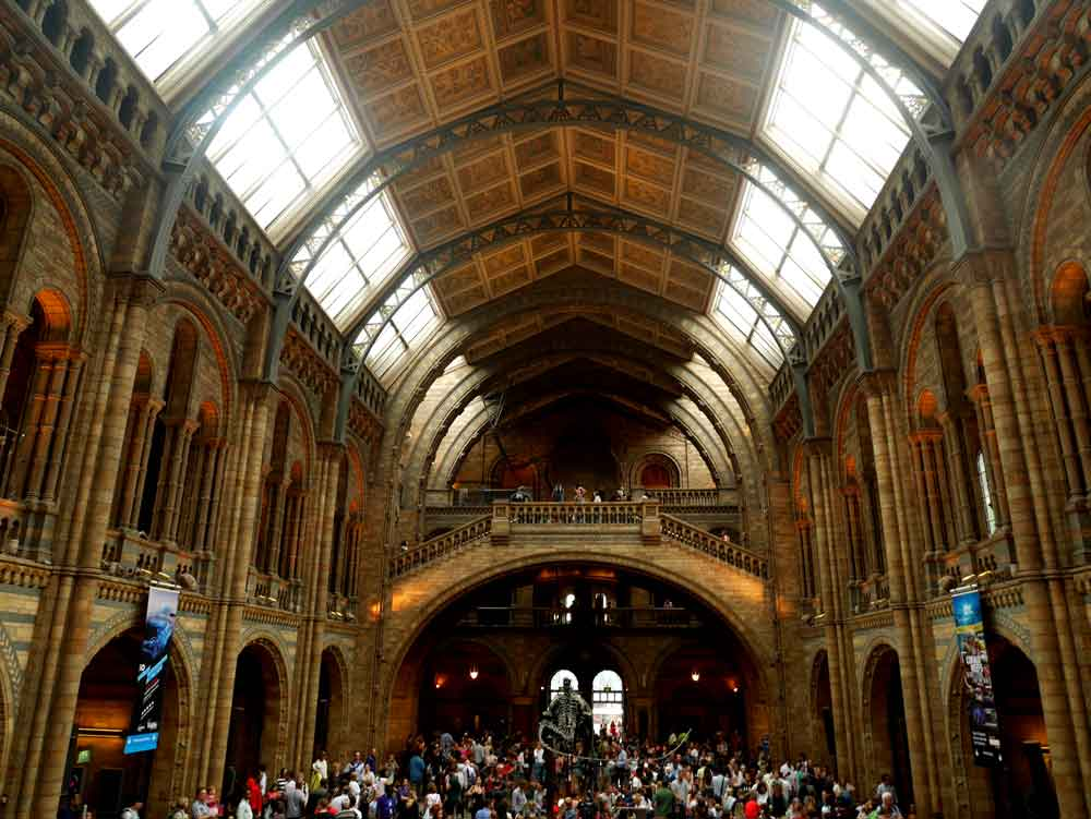 The grand great hall of the Natural History Museum, South Kensington, London | Laugh Travel Eat