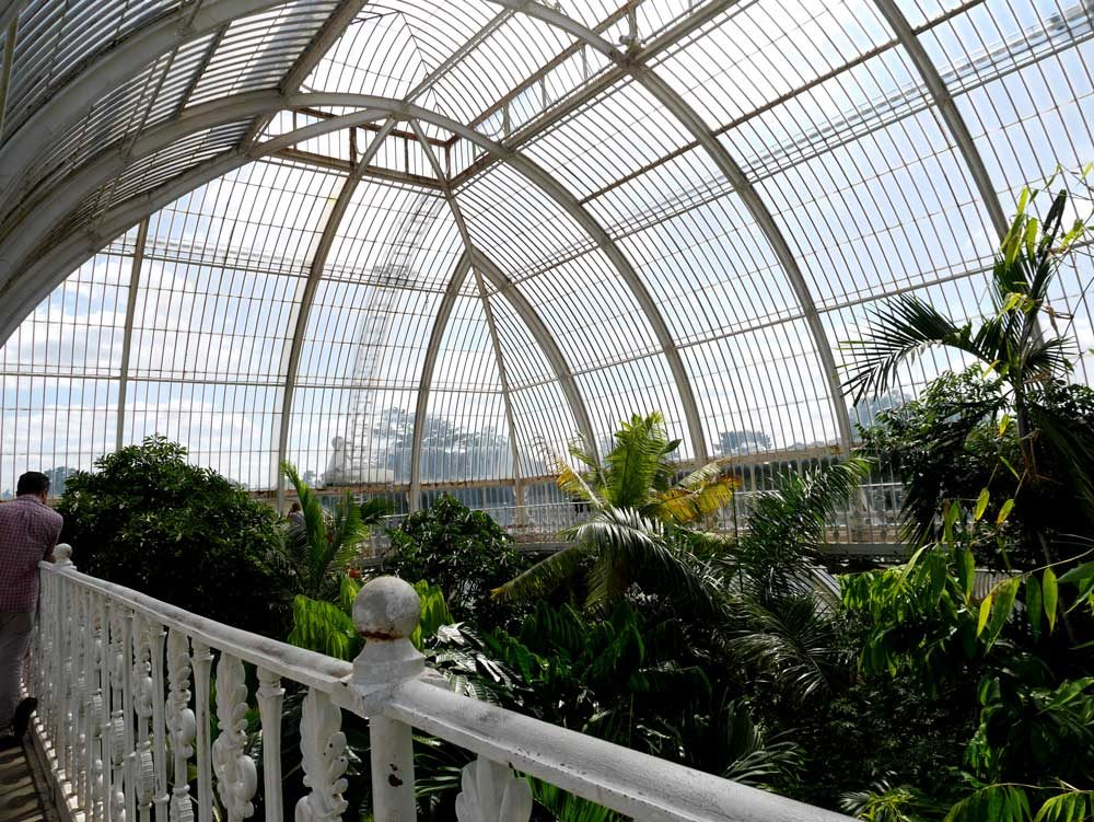 The walkway of Palm House that allows you to be at the level of tree canopy, Kew Garden, London, UK | Laugh Travel Eat
