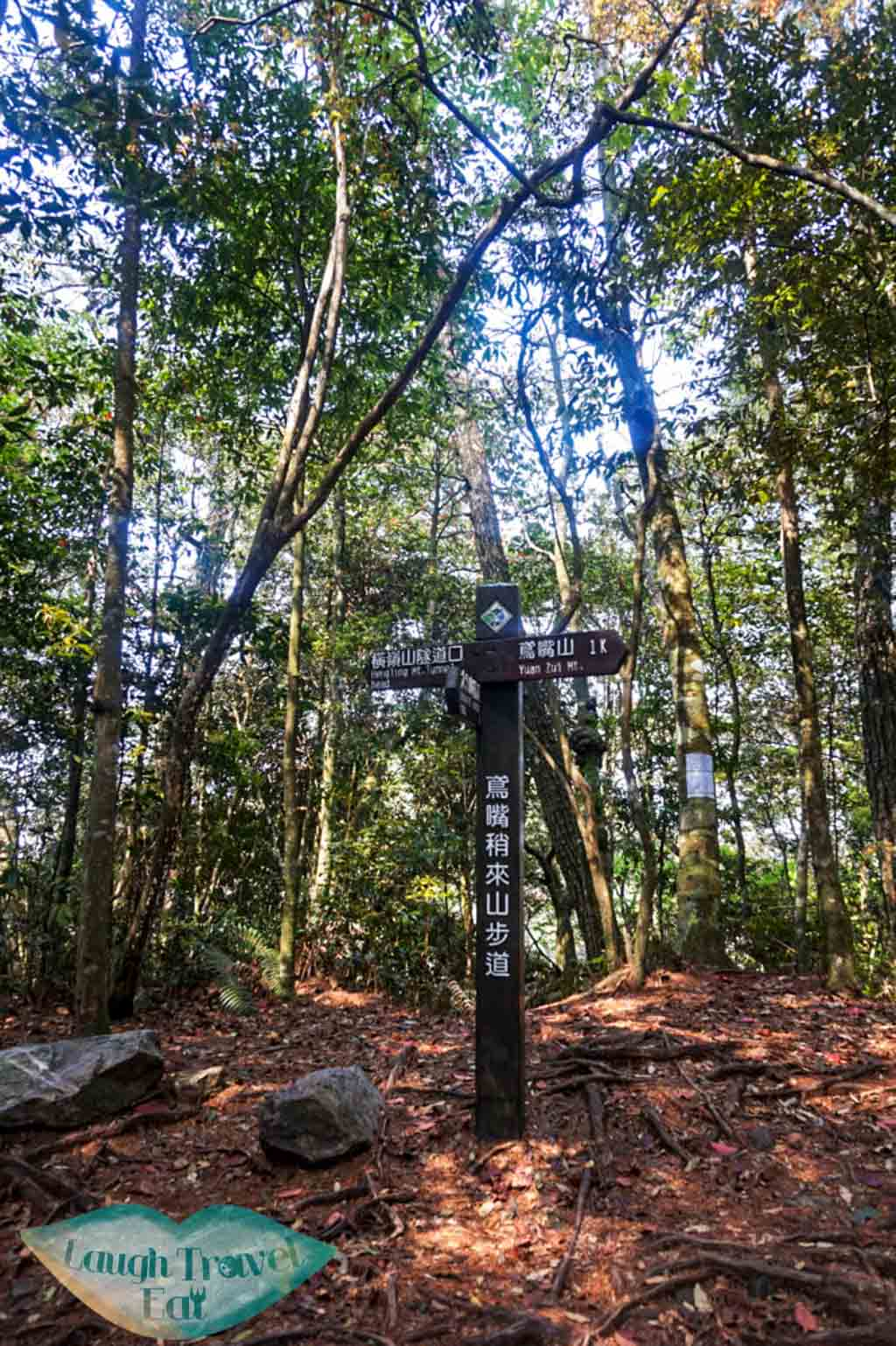 Follow the sign to the right towards Yuan Zui Mountain (1km to go!) at Dasyueshan National Forest Recreational Area - Laugh Travel Eat