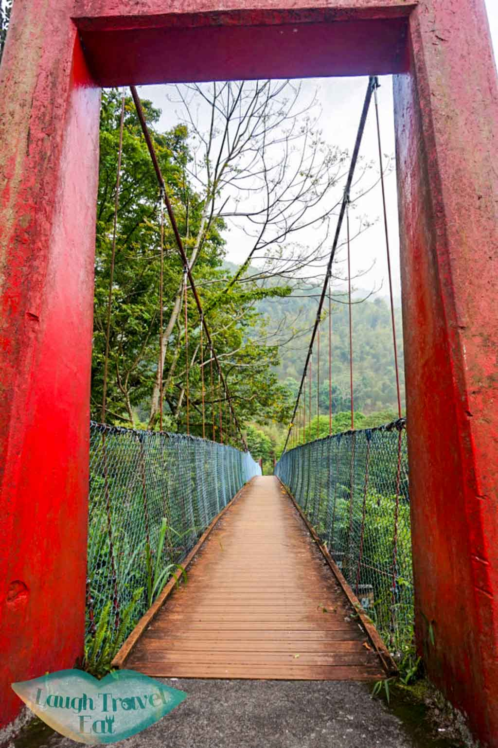 Hanging bridge in Dasyueshan National Forest Recreational Area, Taichung - Laugh Travel Eat