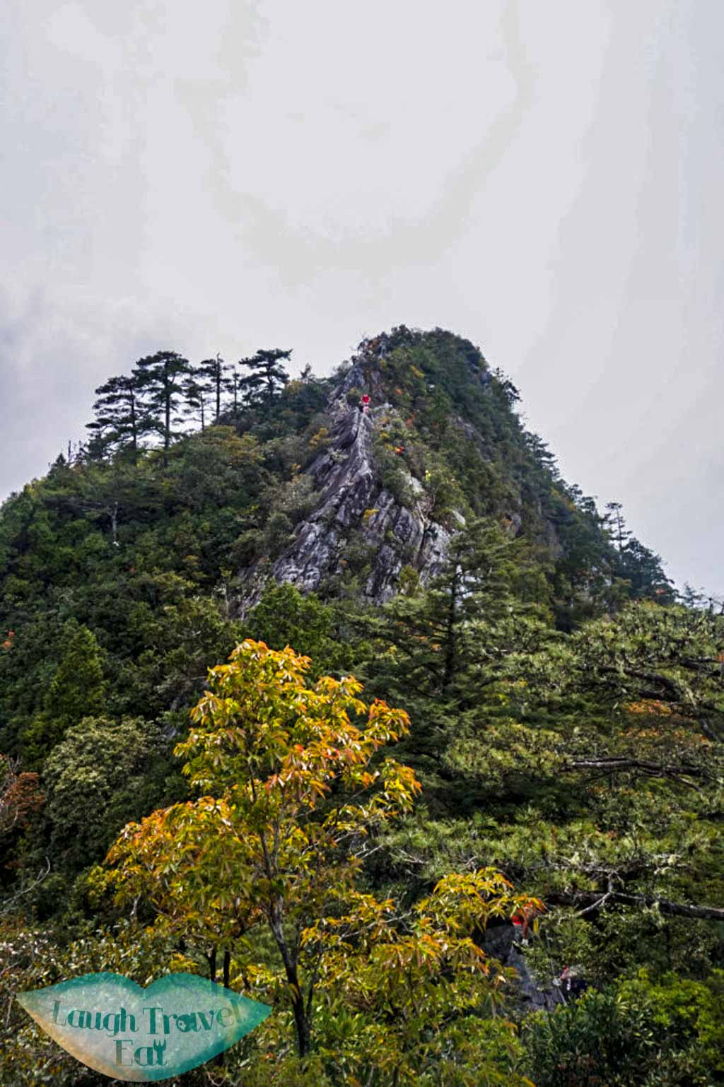 Looking back at descend from peat at Yuan Zui Mountain in Dasyueshan National Forest Recreational Area, Taichung - Laugh Travel Eat