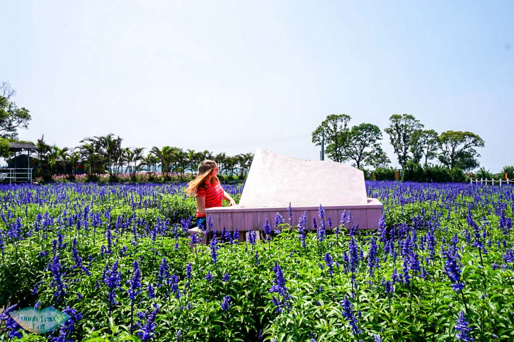 Pretending to play piano on the flower field in Taichung Taiwan | Laugh Travel Eat