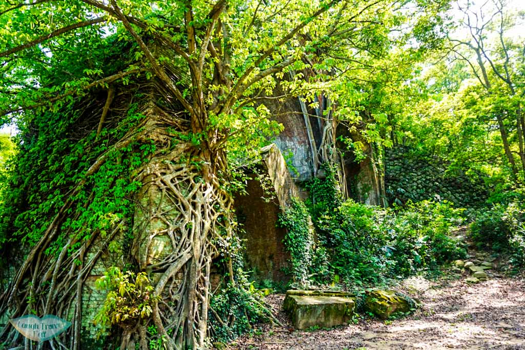 Southern ruin of Longten bridge covered by vegetation Taichung taiwan | Laugh Travel Eat