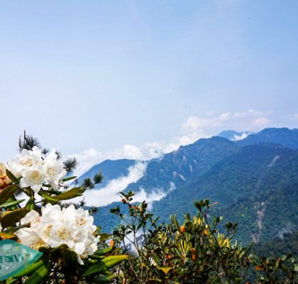Things to do in Taichung hiking up the Yuan Zui Mountain and admiring the view - Laugh Travel Eat