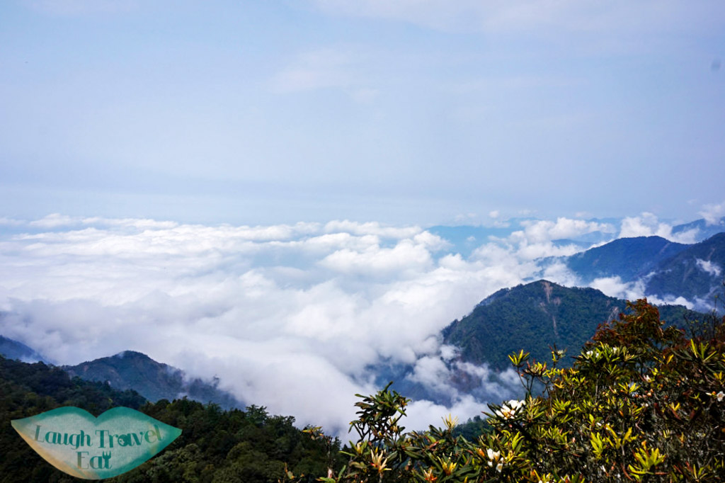View of one side of the mountain chain atop Yuan Zui Mountain in Dasyueshan National Forest Recreational Area, Taichung - Laugh Travel Eat