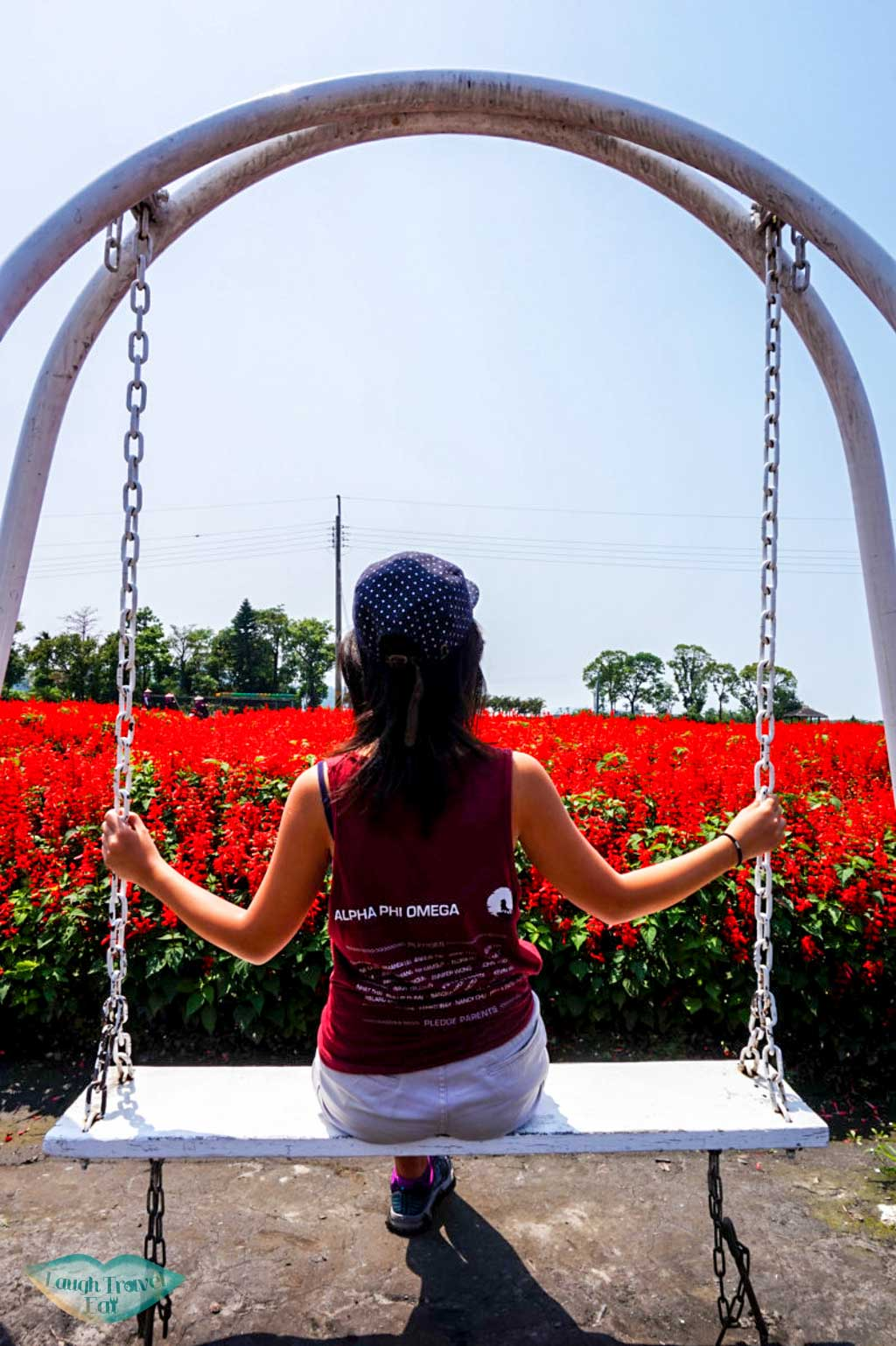 sitting on a swing in the middle of red flower field in Taichung Taowam | Laugh Travel Eat