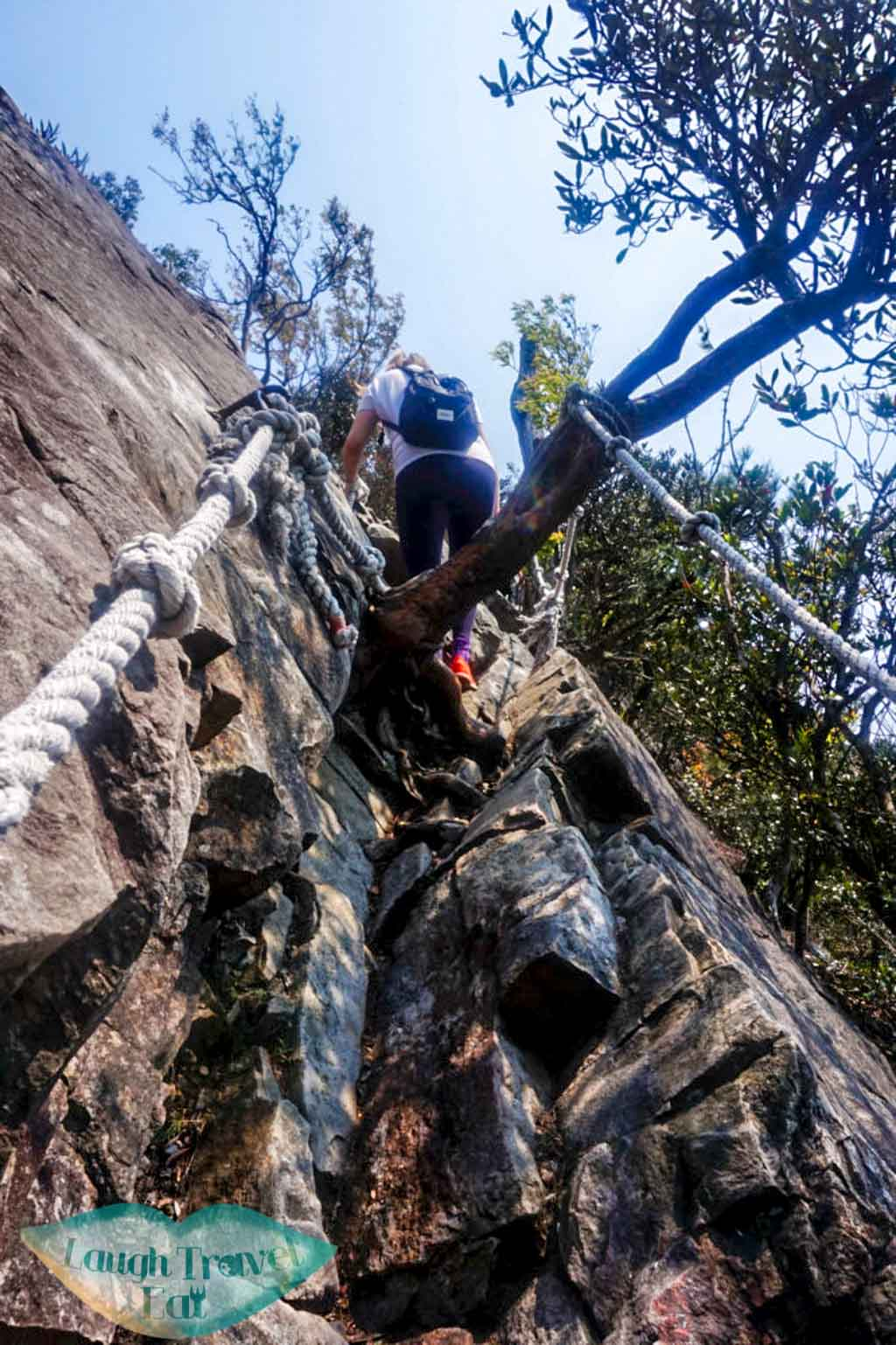 steep part of the trail along rocks at Yuan Zui Mountain in Dasyueshan National Forest Recreational Area, Taichung - Laugh Travel Eat