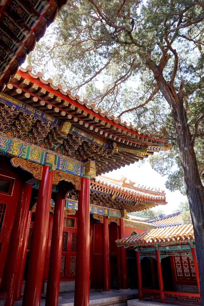 Forbidden City, Beijing | Laugh Travel Eat