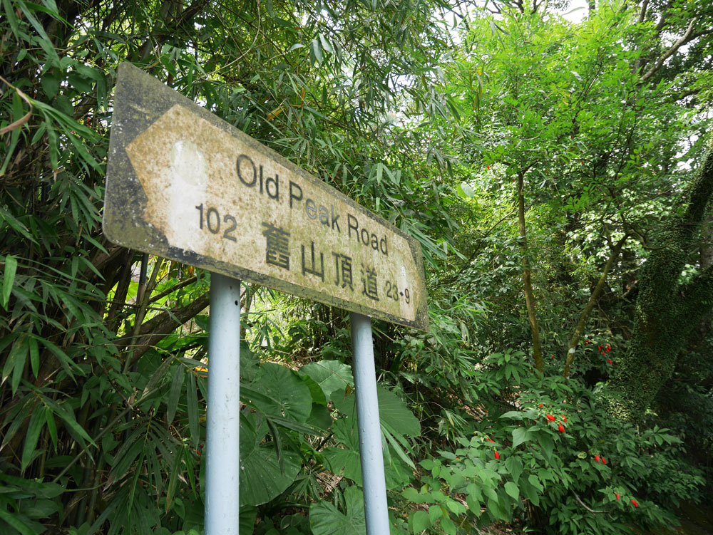 The Old Peak Road, The Ultimate Guide to the Peak, Hong Kong | Laugh Travel Eat