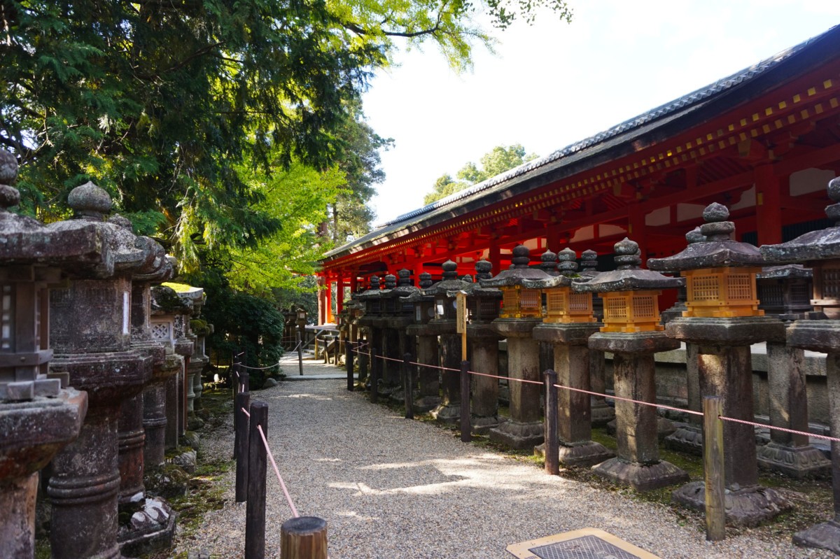 Lanterns at Kasuga-taisha Shinto Shrine Lanterns at Shinto in Nara | Laugh Travel Eat in Nara | Laugh Travel Eat