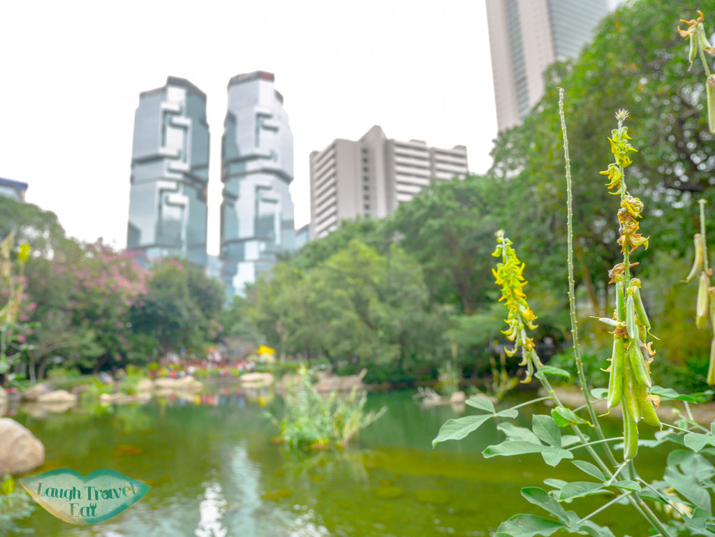 Hong-Kong-Park-facing-Admiralty-by-the-man-made-lake-Central-Hong-Kong-Laugh-Travel-Eat