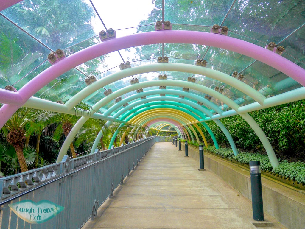 Walkway-towards-the-Cotton-Tree-Drive-Registry-in-Hong-Kong-Park-hong-kong-Laugh-Travel-Eat