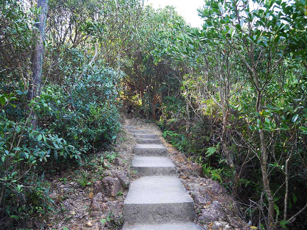 stairs leading up to West High Hill, Hong Kong | Laugh Travel Eat