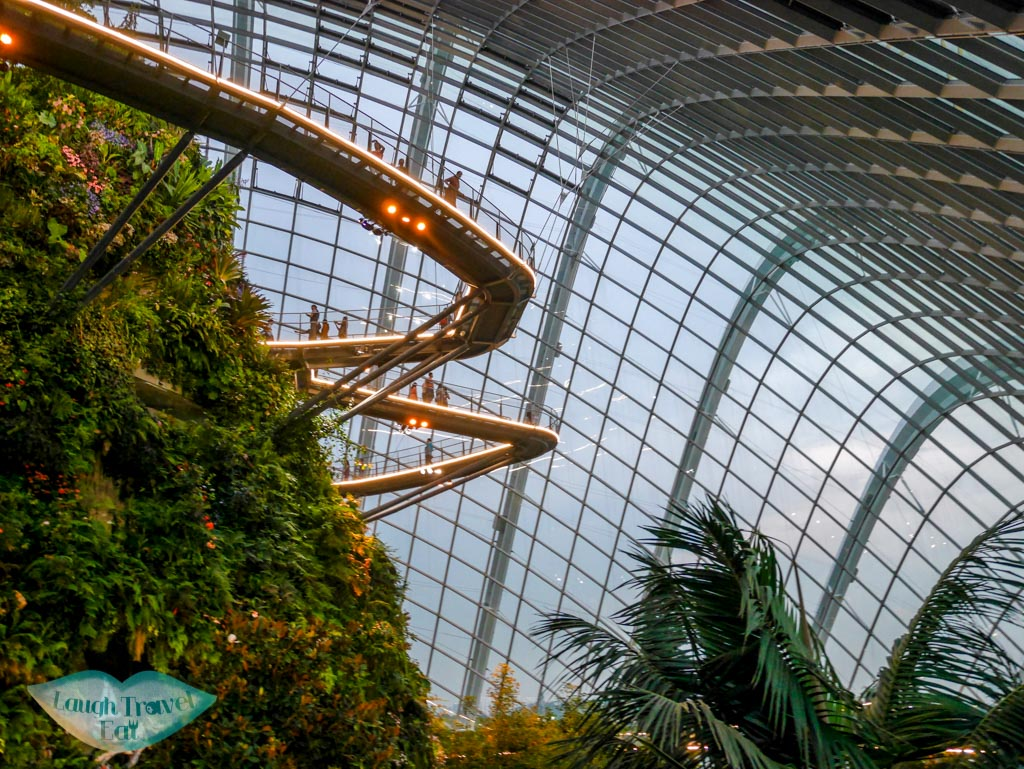 cloud forest in twilight gardens by the bay singapore - laugh travel eat