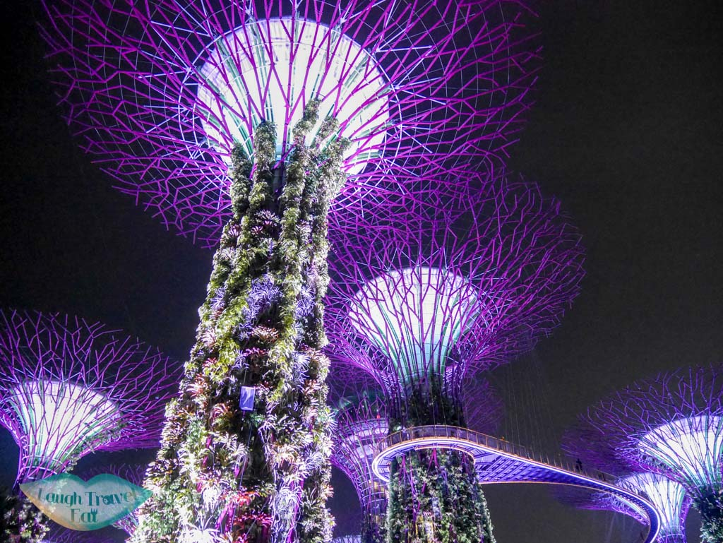 supertree night show gardens by the bay singapore - laugh travel eat
