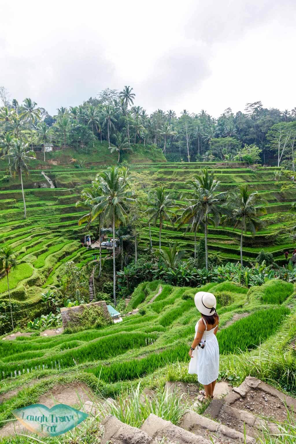 tegalalang rice paddies ubud bali indnoesia - Laugh Travel Eat-2