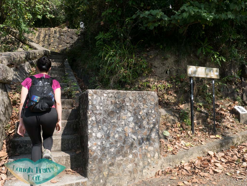shing mun reservoir to maclehose trail stairs needle hill hong kong- laugh travel eat