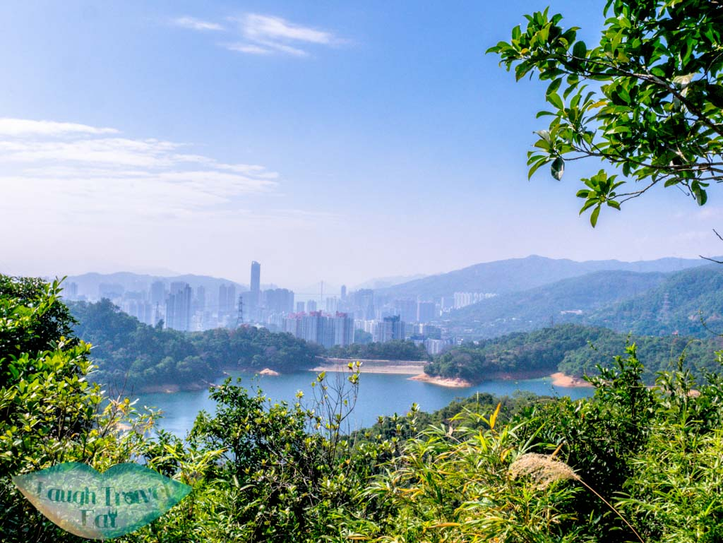 view of shing mun reservior going up maclehose trail stairs needle hill hong kong- laugh travel eat