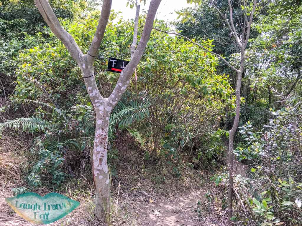 last junction up or down high junk peak trail start hong kong- laugh travel eat