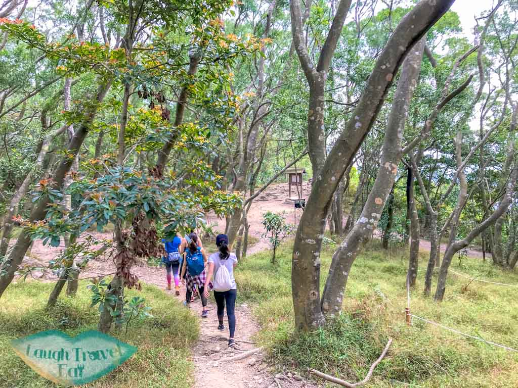 major intersection on trail after high junk peak trail start hong kong- laugh travel eat