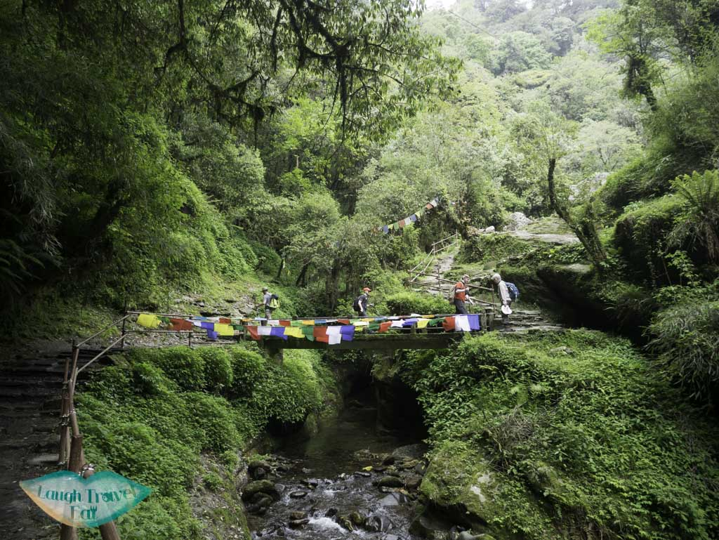 prayer-flags-on-bridge-seen-along-Poon-Hill-Trek-Annapurna-Conservation-Area-Nepal-laugh-travel-eat