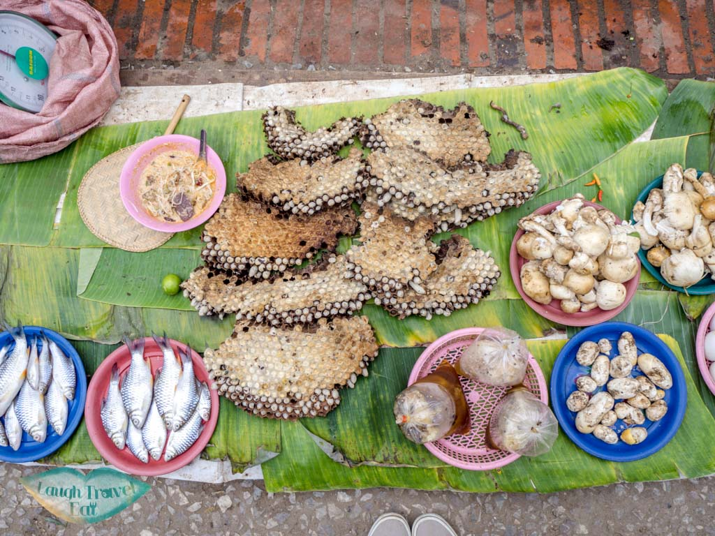 food at morning market luang prabang laos - laugh travel eat