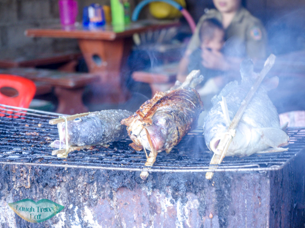 panin grilled fish street food tour backstreet academy luang prabang laos - laugh travel eat