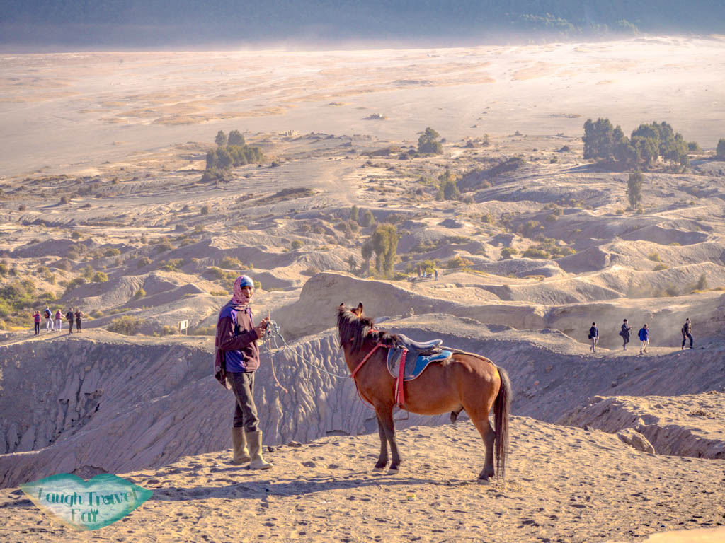 horses-at-mount-bromo-java-indonesia-laugh-travel-eat