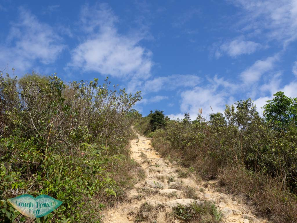 above-vegetation-part-of-trail-tai-to-yan-tai-po-hong-kong-laugh-travel-eat