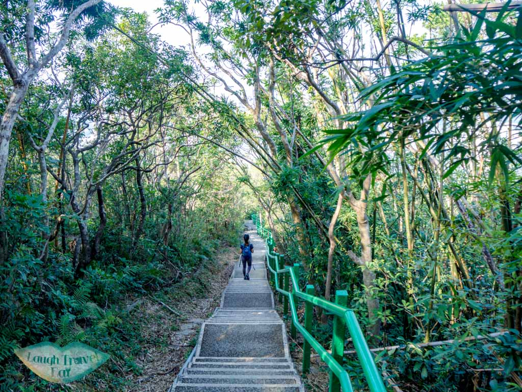 stairs-down-wu-tip-shan-path-start-tai-to-yan-tai-po-hong-kong-laugh-travel-eat