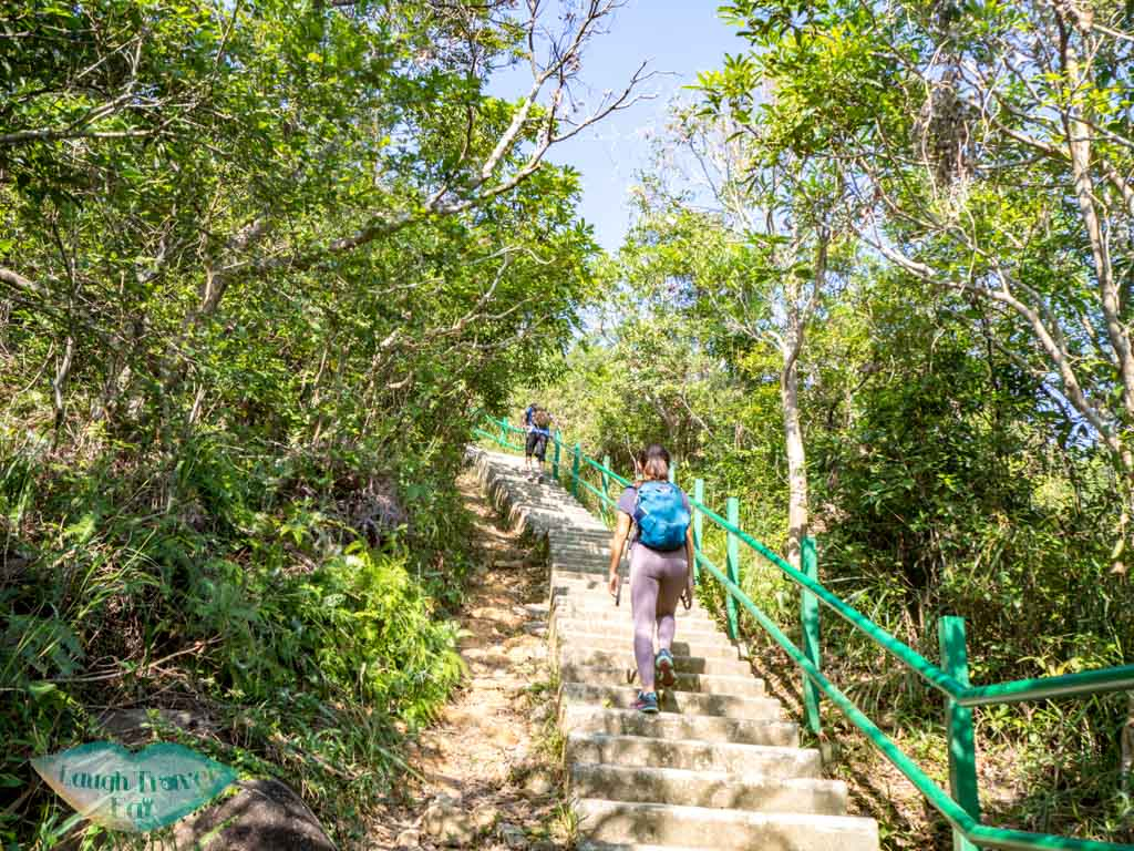 stairs-up-wu-tip-shan-path-start-tai-to-yan-tai-po-hong-kong-laugh-travel-eat