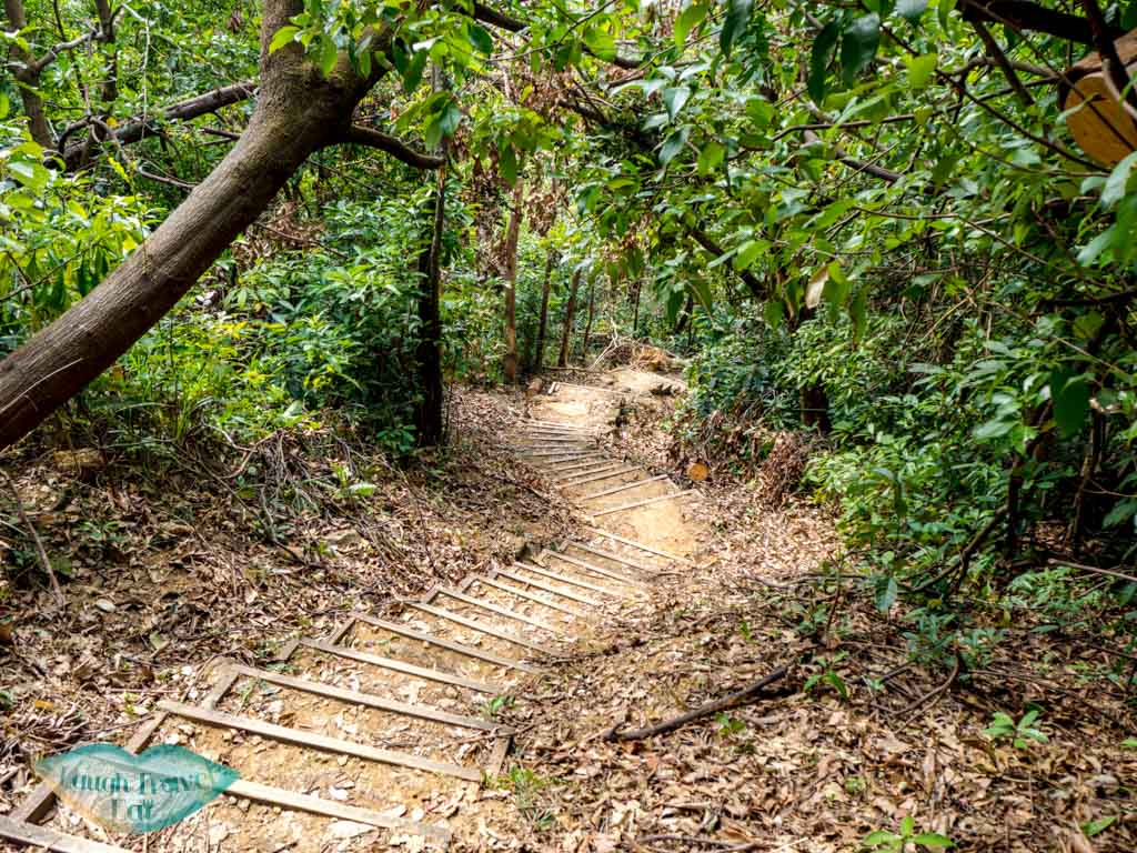 trail-going-up-to-wo-yang-shan-hong-kong-laugh-travel-eat-3