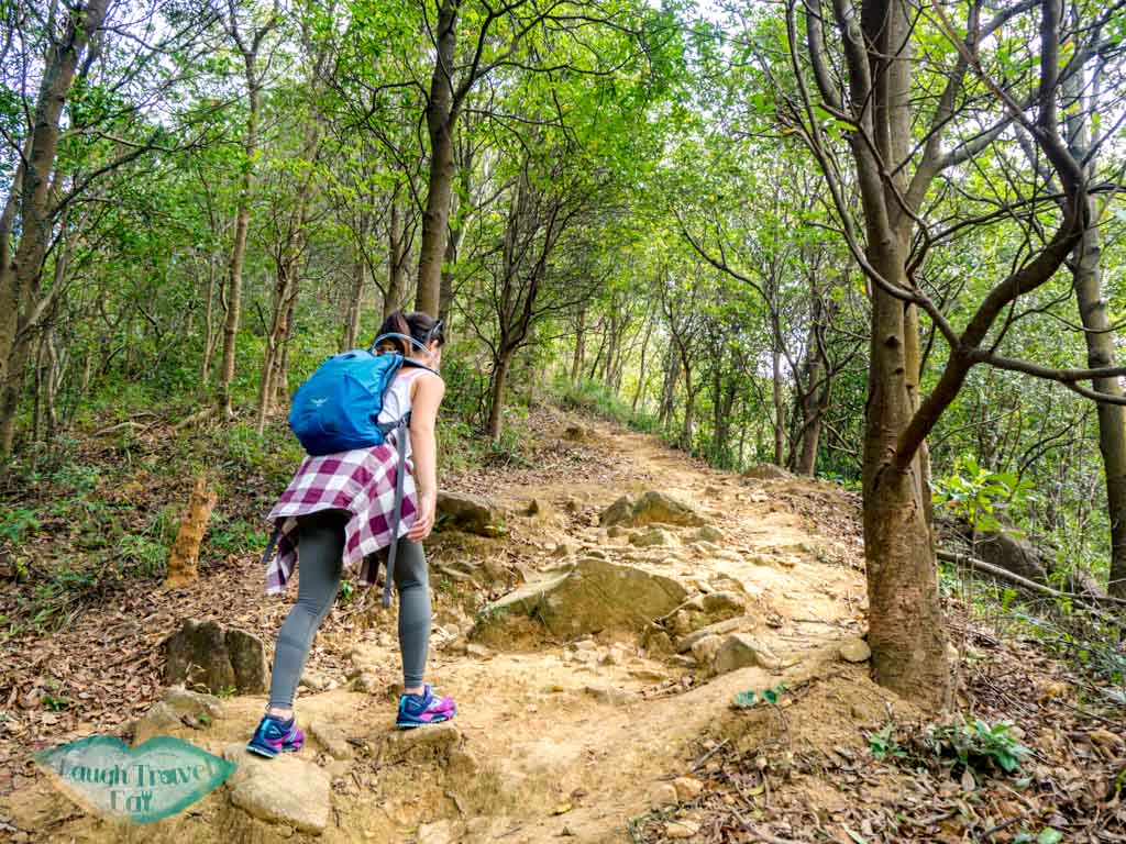 If you are seeking a dreamy hike without a crowd high up in the mountains, Wo Yang Shan is a long but worthwhile hike that's perfect for an adventure. With giant rock outcrops, a view of Tai Mo Shan radar towers as well as the nearby cityscape and Shing Mun Reservoir, here is how to hike Tai Mo Shan: <!--TOC--> Wo Yang Shan summary Difficulty: 4/5 Duration: 6 hours (might want to budget more for photos) Pros: Not a crowded trail with spectacular view of Tai Mo Shan as well as Tsuen Wan and Tsing Yi. Cons: long hike up and back down can be tough on the knees. Also fairly long with several part that's easy to get lost in. it would be best to have an offline map handy. How to get to Wo Yang Shan trail start Take the exit A3 from Tsuen Wan MTR station towards Discovery Park via the long pedestrian bridge. Enroute there you'll see a bridge that goes towards the mountain, take it. From there, follow the path through the tunnel and then up some stairs to the main road. Cross the main road and go left (the stairs across the road isn't the one we want to take). Wait until you reach this one, which has a sign a few more steps up declaring that it goes up to Fu Yung Shan. This portion has a stretch of almost endless stairs, but once you reach the top the path evens out for a good while before it's time to head up again. Some more distinctive structures along the way are the black and yellow blocks to the side, which are decent for photos, one or two pavilions, as well as the view of Western Monastery. Once you reach a dam-like structure, take the stairs that goes up just after it. There is a sign that points to Lung Mun Country Trail and Chuen Lun. Go up the trail and when you reach this sign, go left to the side marked Chuen Lun then take the trail to the right a few paces to the Lead Mine Pass. This part also has a lot of stairs but of mud and wood, then it becomes a slope. The bulk of it is over once you emerge from the vegetation. Be careful of the last slope up to the first view point, aka the nearest crest we see. It's fairly loose and slippery. Wo Yang Shan viewpoint If you have a drone, this is a good place to take it out for a spin, but do be careful of the transformers a little distance in front which could potentially disrupt the signal. Here, you can also see the radar towers at Tai Mo Shan, too, which we will be heading towards but won't be actually going pass. To get to Wo Yang Shan, we carry on up to the mountains we see at the back. When you get up, head towards the sign that says danger, do not past to the front left and don't turn right. This part of the trail is also very slippery, which is why it's easier to go up than to go down. The top shares a similar view to the first view point, so if you want to take photos and or fly your drone here, it's good, too. As you carry on up, there are several more giant rock outcrop that's great for photos with the city and Shing Mun Reservoir in the background. On a good day, the Lion Rock Mountain is visible too. Do look at the time as you take photos as it's easy to get carried away with all the photo opportunity here. Continue the path up and meander your way through the giant boulders, with the Tai Mo Shan Weather Radar directly in front. The rocks slowly become replaced by ankle high grass then by hedges that are taller than me. Keep an eye out here and make sure you stay parallel to the Tai Mo Shan Radar towers and not head south too early. It's a longish hike through the hedges and paths, crossing two streams before reaching the Tai Mo Shan Fire Lookout at Miu Ko Toi. Here, the path drop down quite steeply but also offer a stunning panorama. I needed a knee brace to help with the descent but overall it's not as slippery as I thought. Once you go down two big slopes, watch out for a path to the right that will take you to Chuen Lung, marked by white ribbons hung on tree branch. Here, it's best to have a map (I use OSMAnd which is free) to make sure you are in the right place. The direct route is steeper, so look out for one that's hidden in the vegetation: The route goes almost straight to Chuen Lung, so just stay on the track as it go steeply down. It briefly intersects with a big path but carry on straight down. The last stretch sees a small bamboo forest before we emerge next to someone's house. How to get out We ended the hike at Cheun Lung and got the minibus at the end of the village back to Tsuen Wan. There is only one minibus number 80 and we took it to the end stop to go back to the MTR. Once you get off, head towards the small lane by the 7-11 and then take a right and go up the escalator. Just carry on straight from the pedestrian bridge and you'll reach the MTR station quickly.