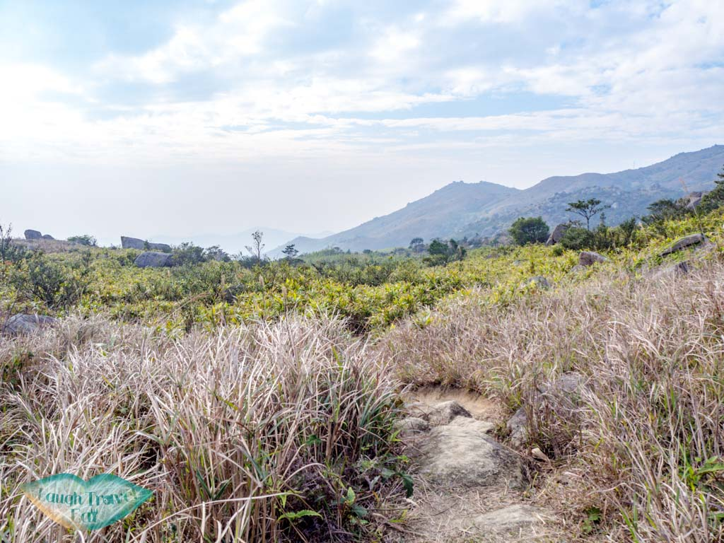 grass-field-heading-towards-tai-mo-shan-lookout-wo-yang-shan-hong-kong-laugh-travel-eat