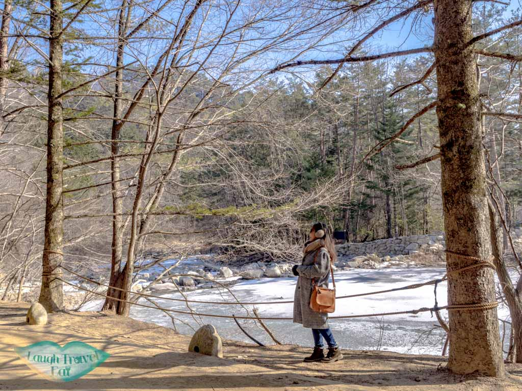 odaeson-national-park-fir-forest-aplensia-ski-resort-pyeongchang-gangwon-south-korea-laugh-travel-eat