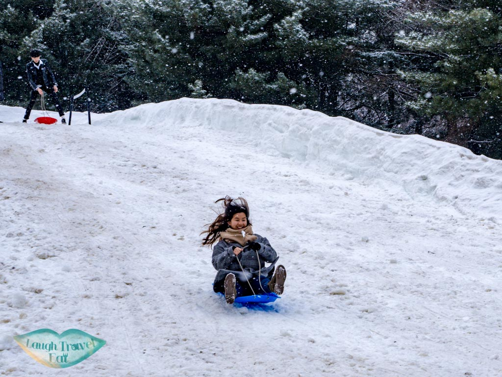 sledging-on-nami-island-gangwon-south-korea-laugh-travel-eat
