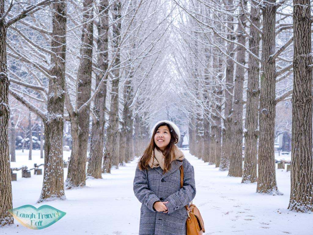 snow-in-the-famous-treeline-nami-island-gangwon-south-korea-laugh-travel-eat
