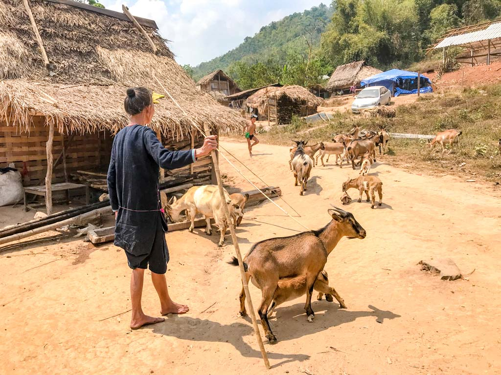 Nam-Koi-village-nam-ha-national-park-luang-namtha-laos-laugh-travel-eat-2