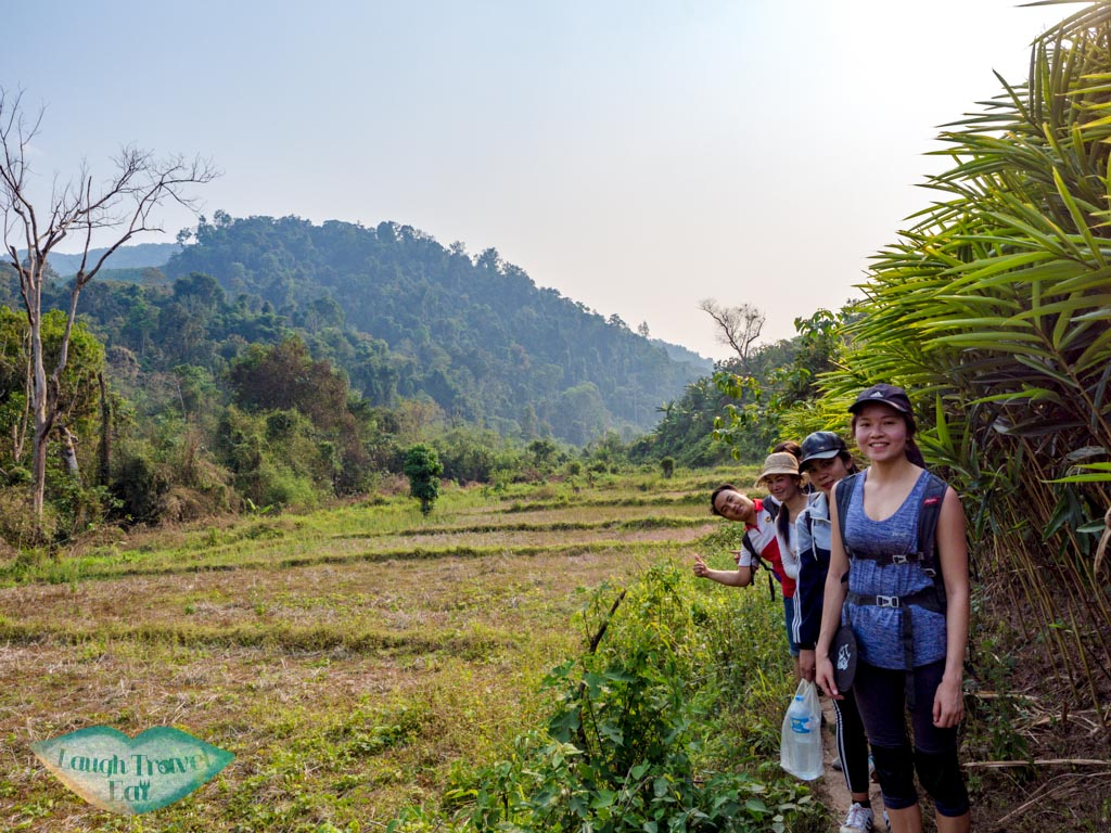more-clear-forest-nam-ha-national-park-luang-namtha-laos-laugh-travel-eat-3