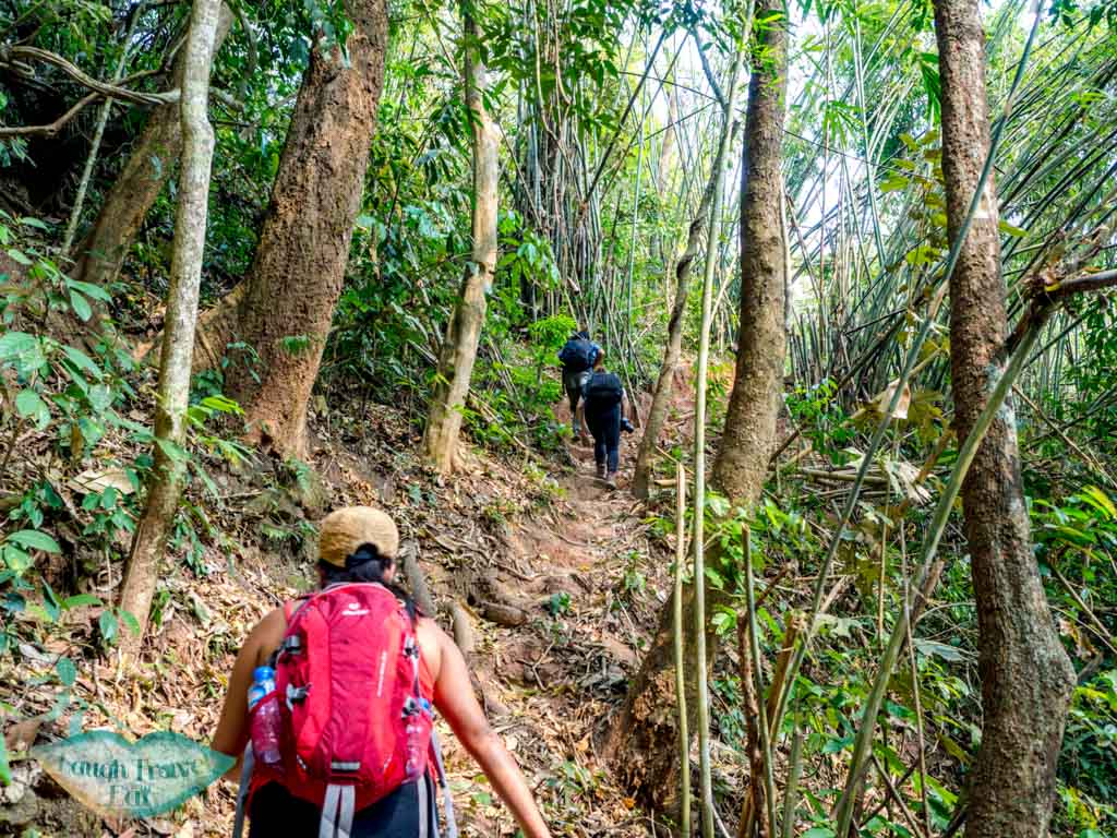 post-jungle-camp-narrow-trail-nam-ha-national-park-luang-namtha-laos-laugh-travel-eat-2