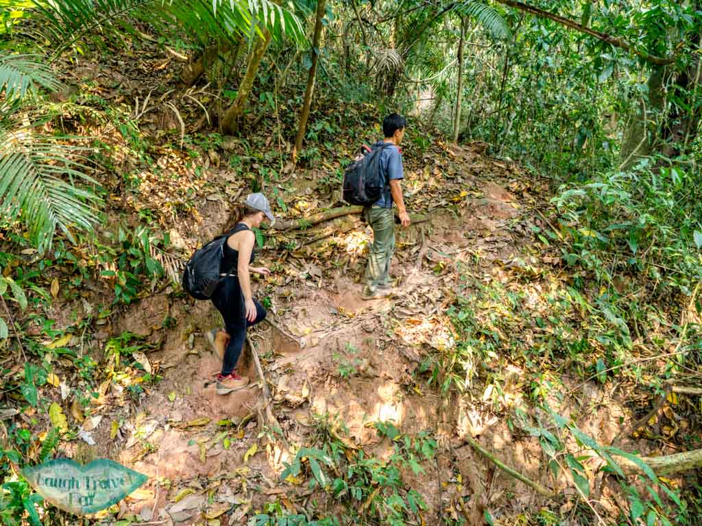 post-lunch-up-and-down-hike-nam-ha-national-park-luang-namtha-laos-laugh-travel-eat-2