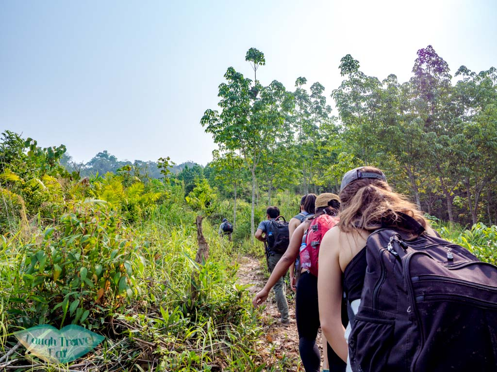 pre-lunch-landscape-trek-in-nam-ha-national-park-luang-namtha-laos-laugh-travel-eat