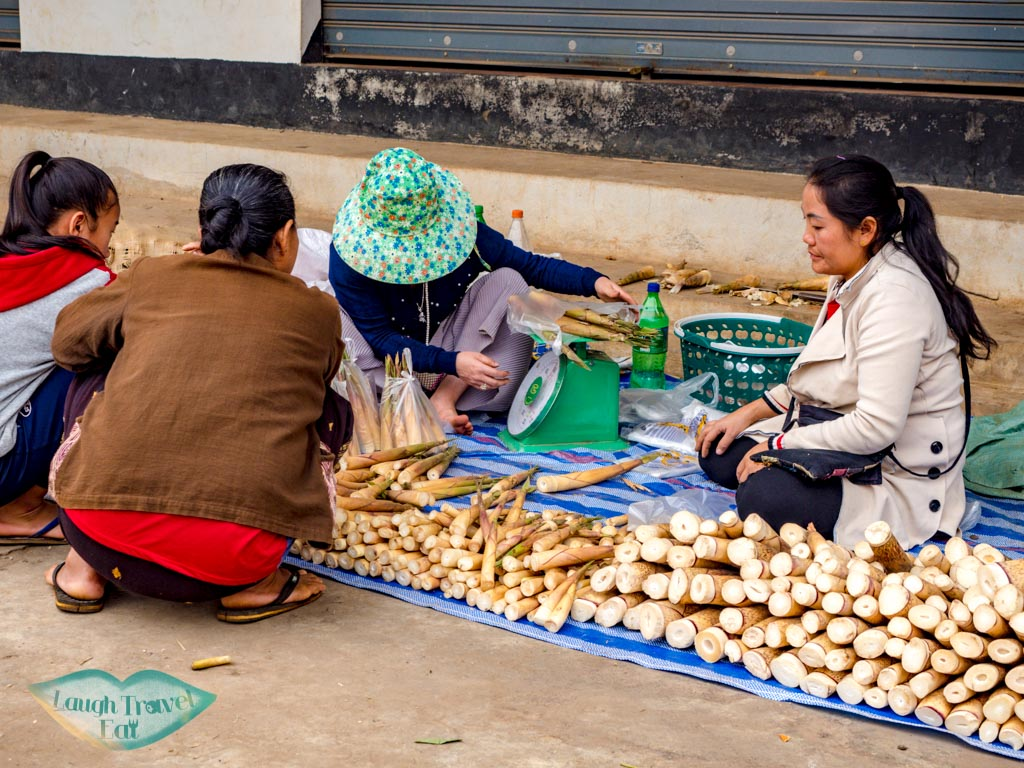 local-lady-selling-bamboo-shoots-morning-market-houay-xay-laos-laugh-travel-eat