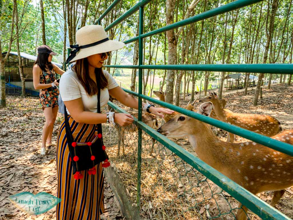 me-with-deers-Phouphetpheoukham-Garden-Vieng-Phou-Kha-laos-laugh-travel-eat